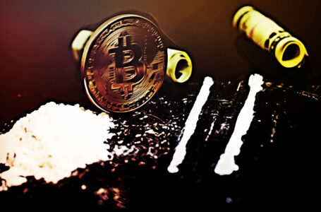 Drugs and Bitcoin Seized in Massive Raid on Dark Web